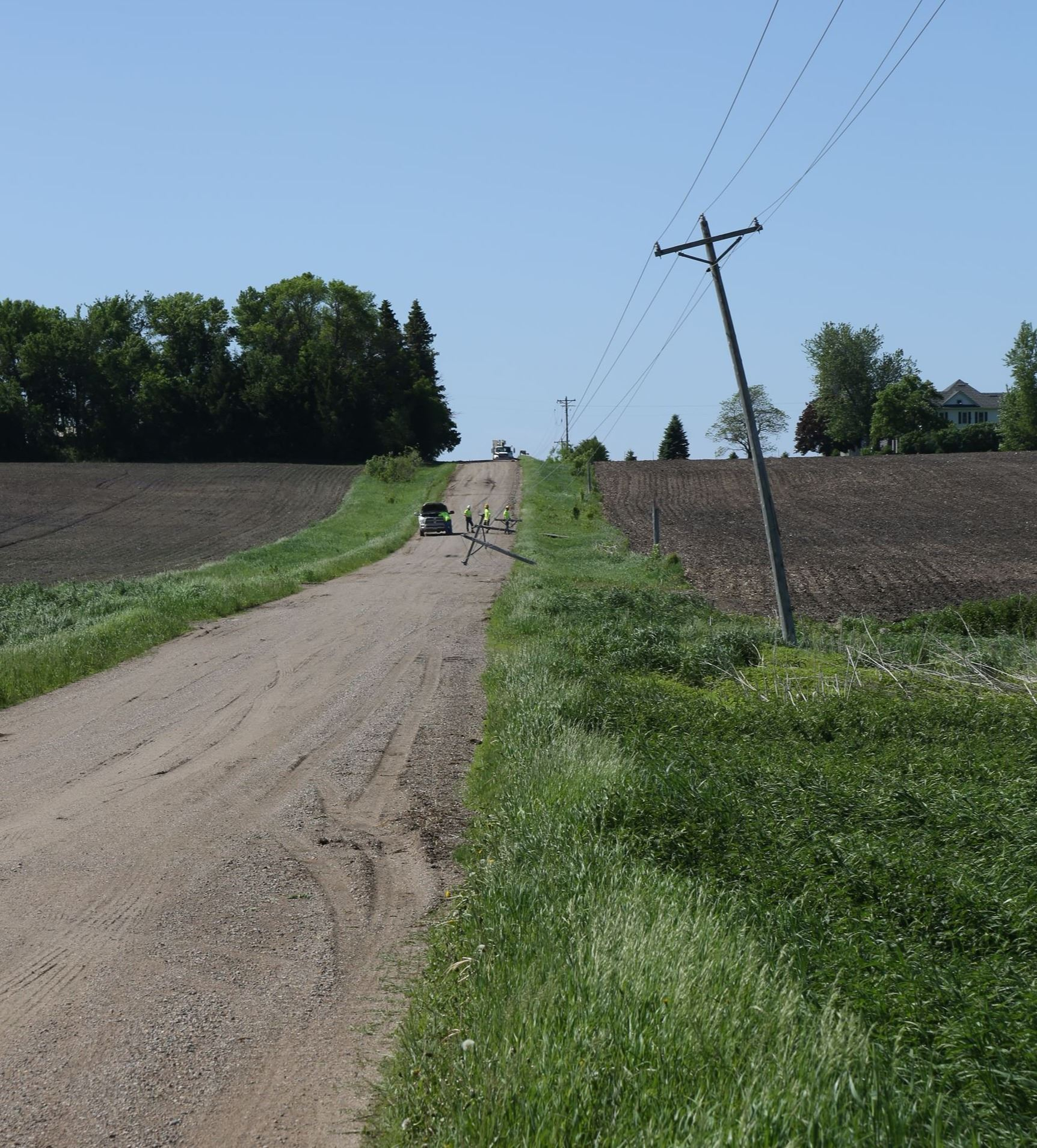 Utility poles near 271st Avenue South of Hwy 19